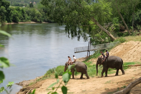 thailand-swimwithelephant-05jpg