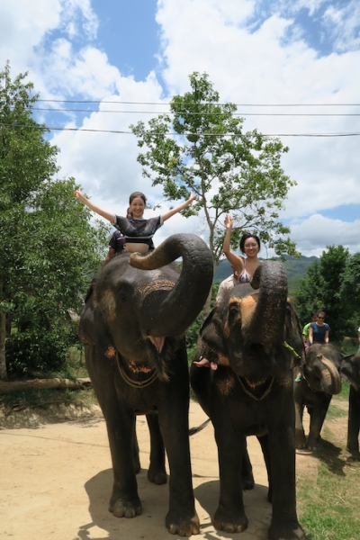 thailand-swimwithelephant-13